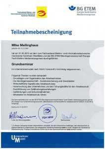 BG Grundseminar Mike Mellinghaus